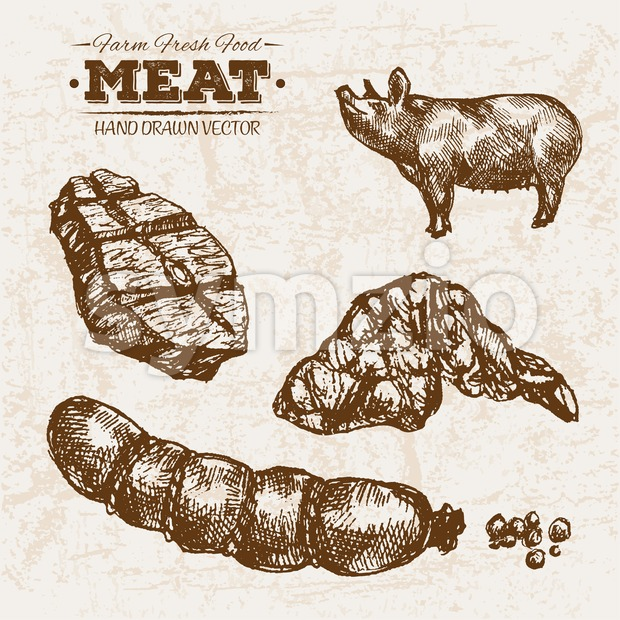 Hand drawn sketch pork meat and sausages products set, farm fresh food, black and white vintage illustration