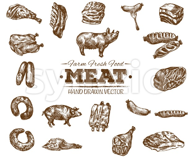 Collection 7 of hand drawn meat sketch, black and white vintage illustration Stock Vector