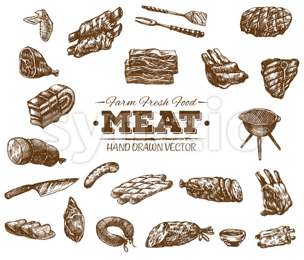 Collection of hand drawn meat sketch, black and white vintage illustration